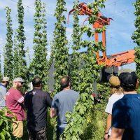 brew team hop farm